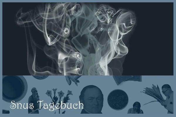 Neues Tabakproduktegesetz - und was es für Schweizer Snus-Freunde bedeutet