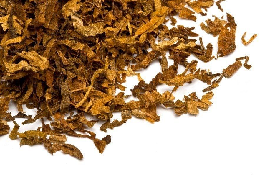 Tabakanbau selbstgemacht
